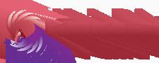 Falki Pictures Logo